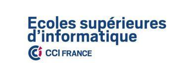 logo-cci-france-esi.jpg