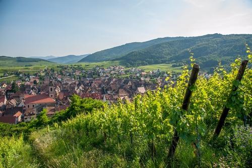 village-alsacien-yves-trotzier-0071.jpg